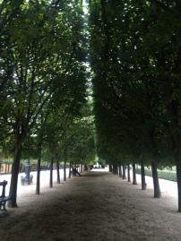 paris-france-trees-courtyard
