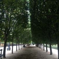 paris-france-trees-courtyard