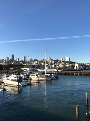 san-fran-marina-city-view