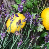 Fresh Picks: Herb Garden + Baked Lavender Lemon